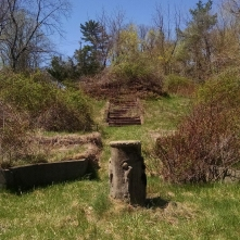Some mysterious stairs that lead to nowhere behind the greenhouses. I'm assuming this was once a part of Thompson's vast estate.