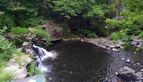 The serene stream and waterfall that was found at the end of our path.
